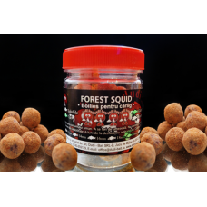 Dudi-Bait Hook boilies Forest Squid