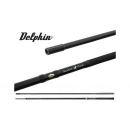 Delphin Symbol Carp