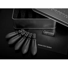 Gemini A.R.C System Lead